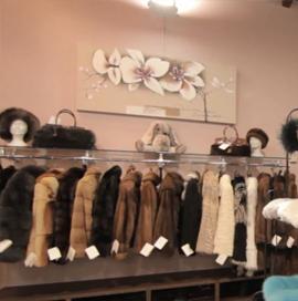 4_showroom